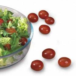 Pomidor Summer Brix F1 - 250 nasion